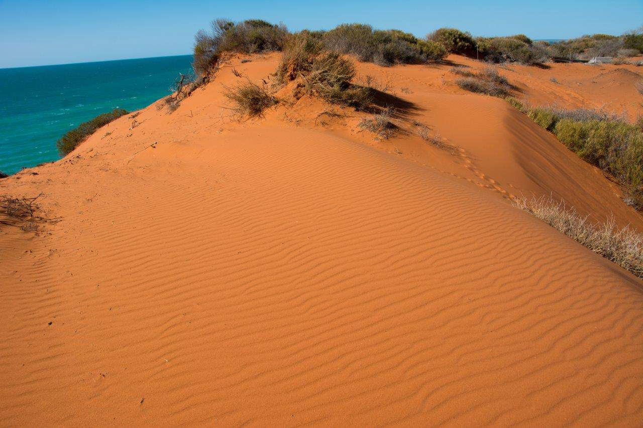 Sand at Francois Peron National Park