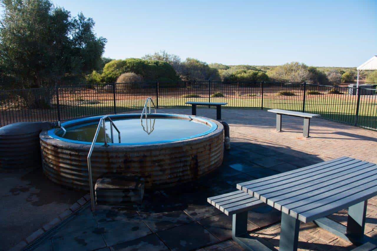 Artesian hot springs at Denham