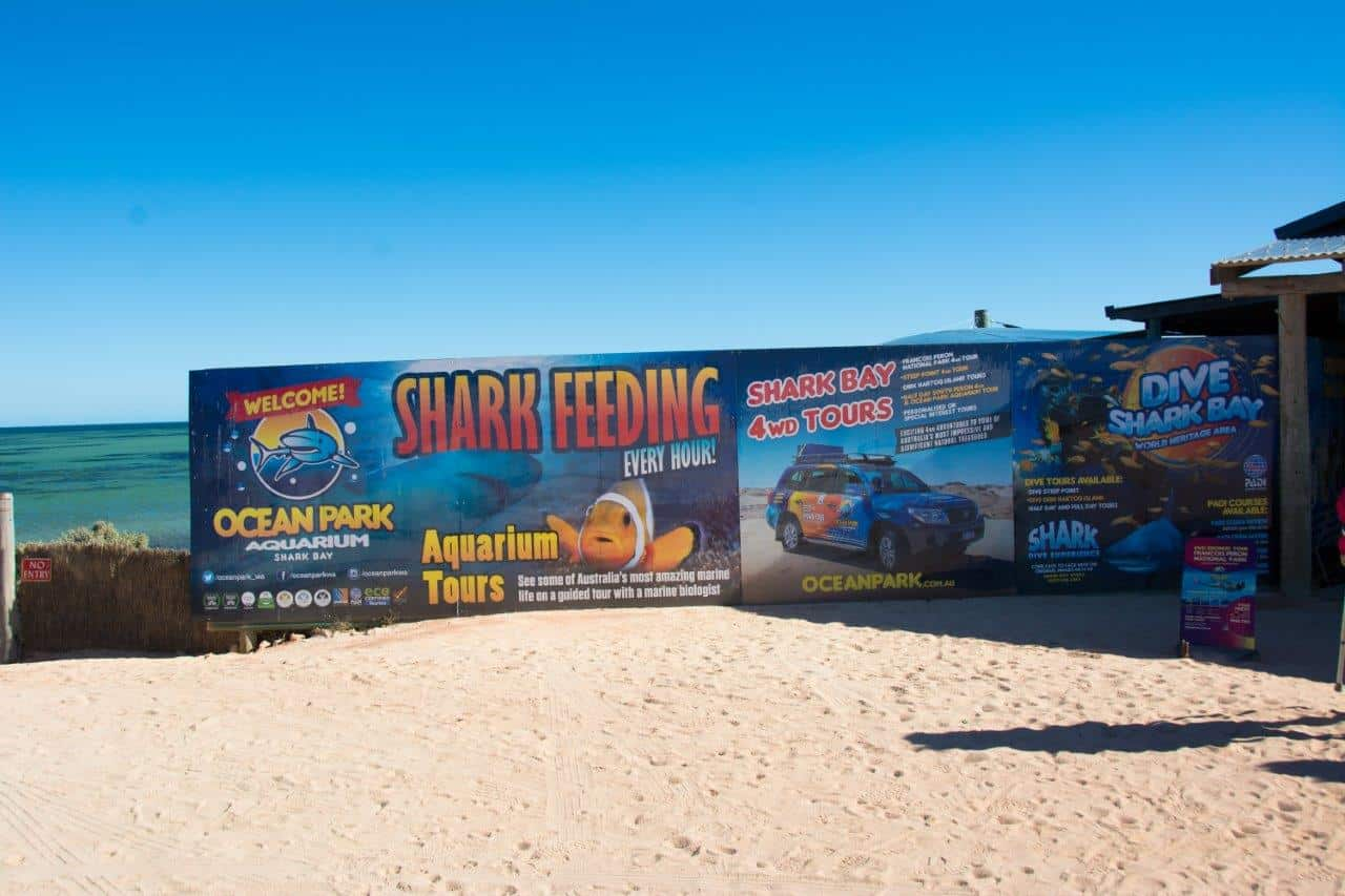 Shark Bay Aquarium