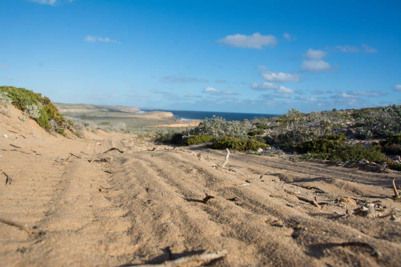 Sandy tracks around Dirk Hartog