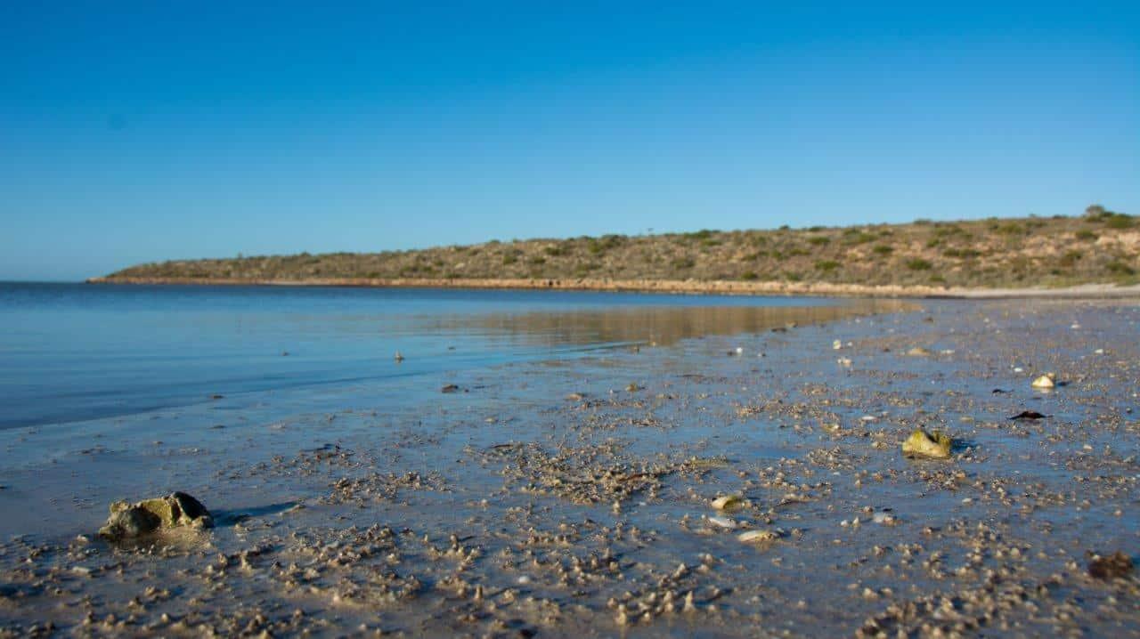 Tides at Dirk Hartog Island
