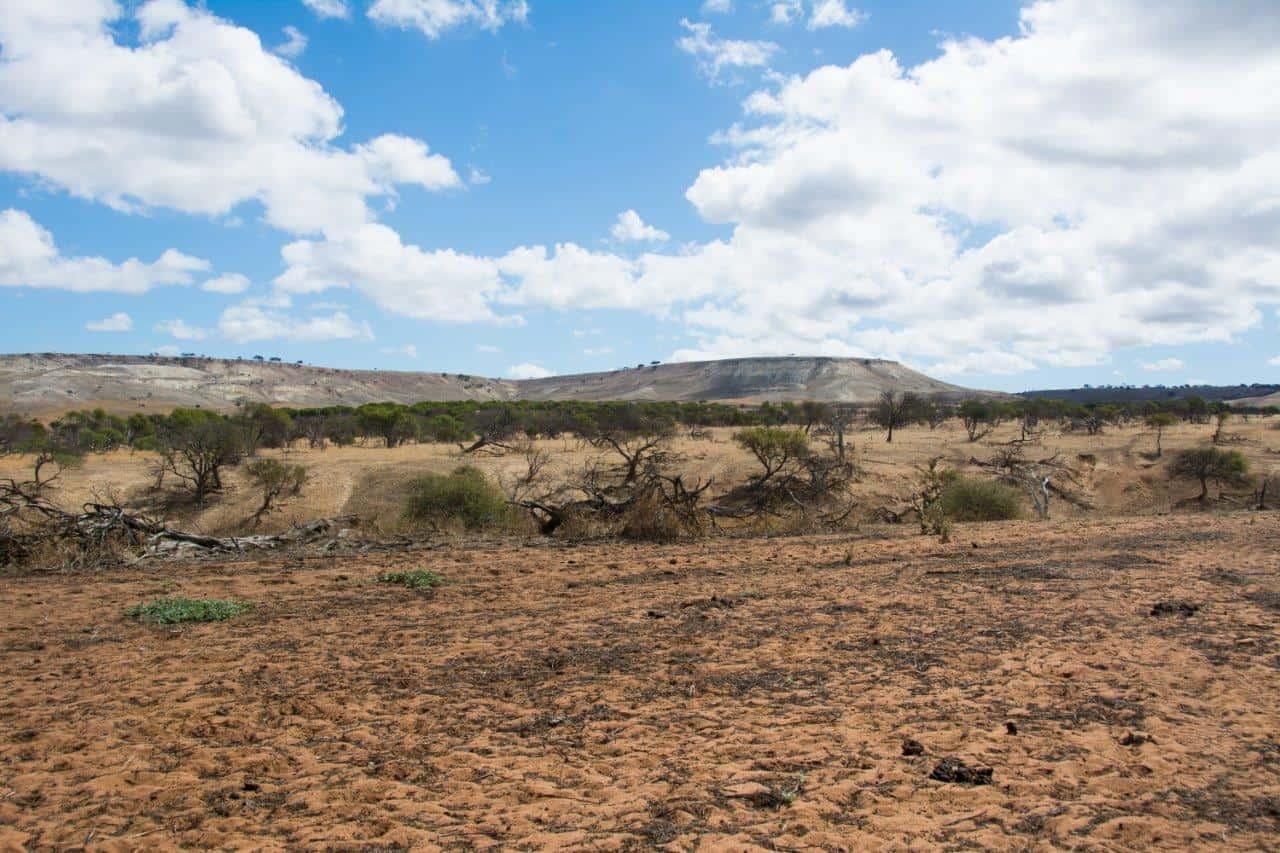 Landscape changes at Murchison