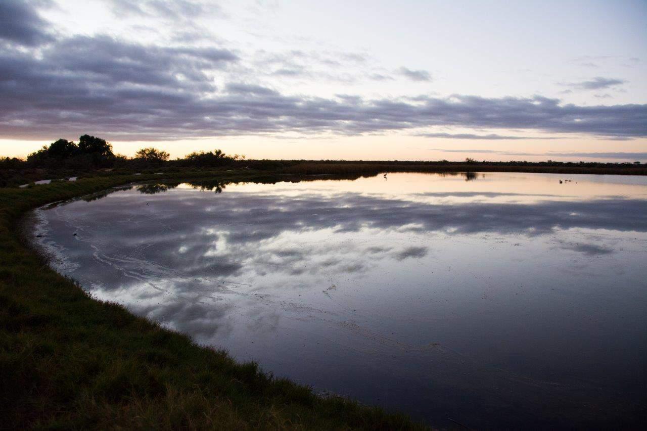 Lake at Hamelin Station Stay