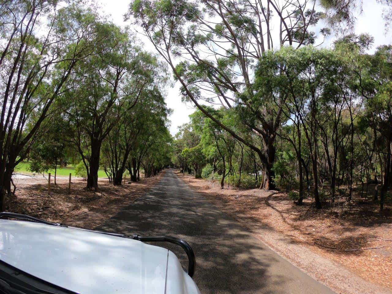 On the way to Rest Point Caravan Park in Walpole