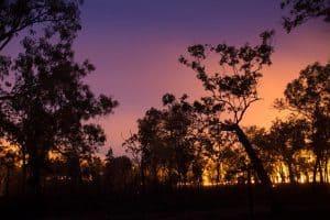 Litchfield National Park fires