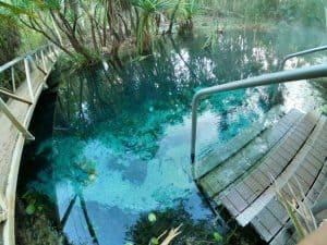Bitter Springs Mataranka