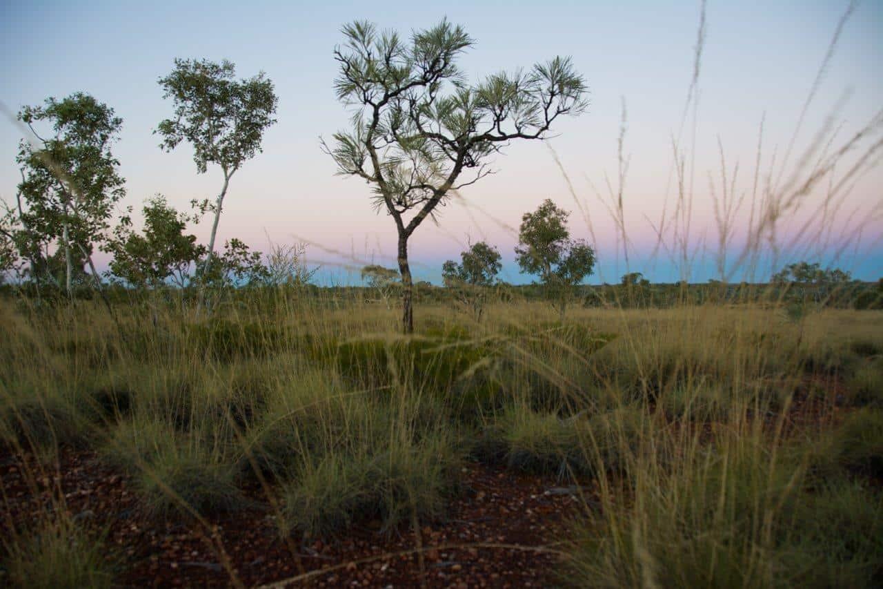 Magic sunsets at Larrawa