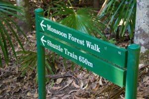 Walking around the park
