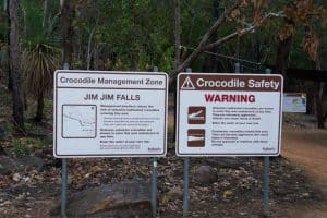 Kakadu National Park Crocodiles