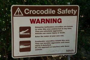 Crocodile danger signs