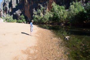Windjana Gorge Crocs