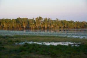 Kakadu National Park - Sandy Billabong