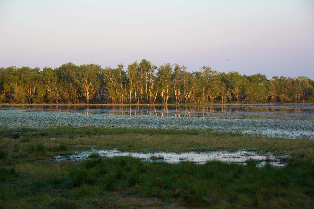 Kakadu National Park - Sandy Billabong