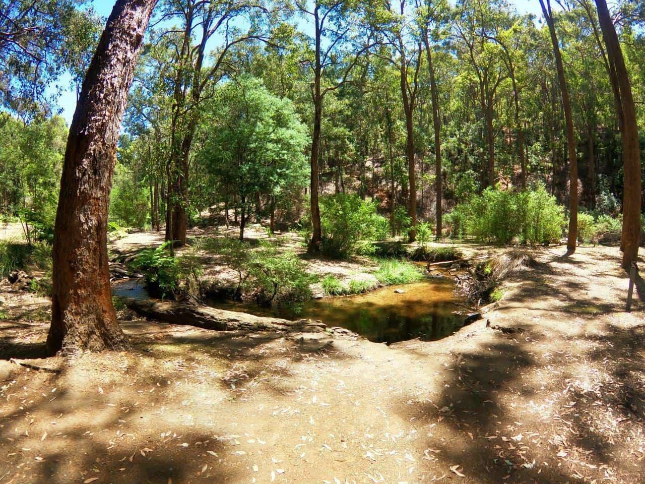 Incredible creek at Nanga