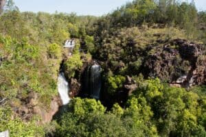 Florence falls from on top