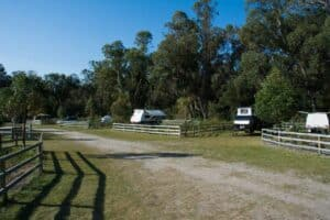 Henry White Oval camp sites