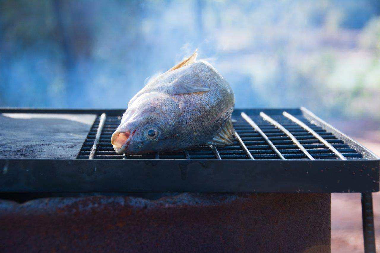 Cooking fish on the fire