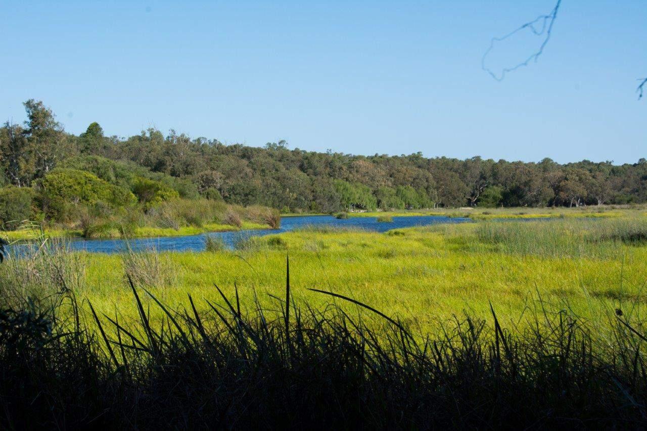 Yanchep Lake