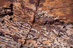 Zebra Rock in the NT