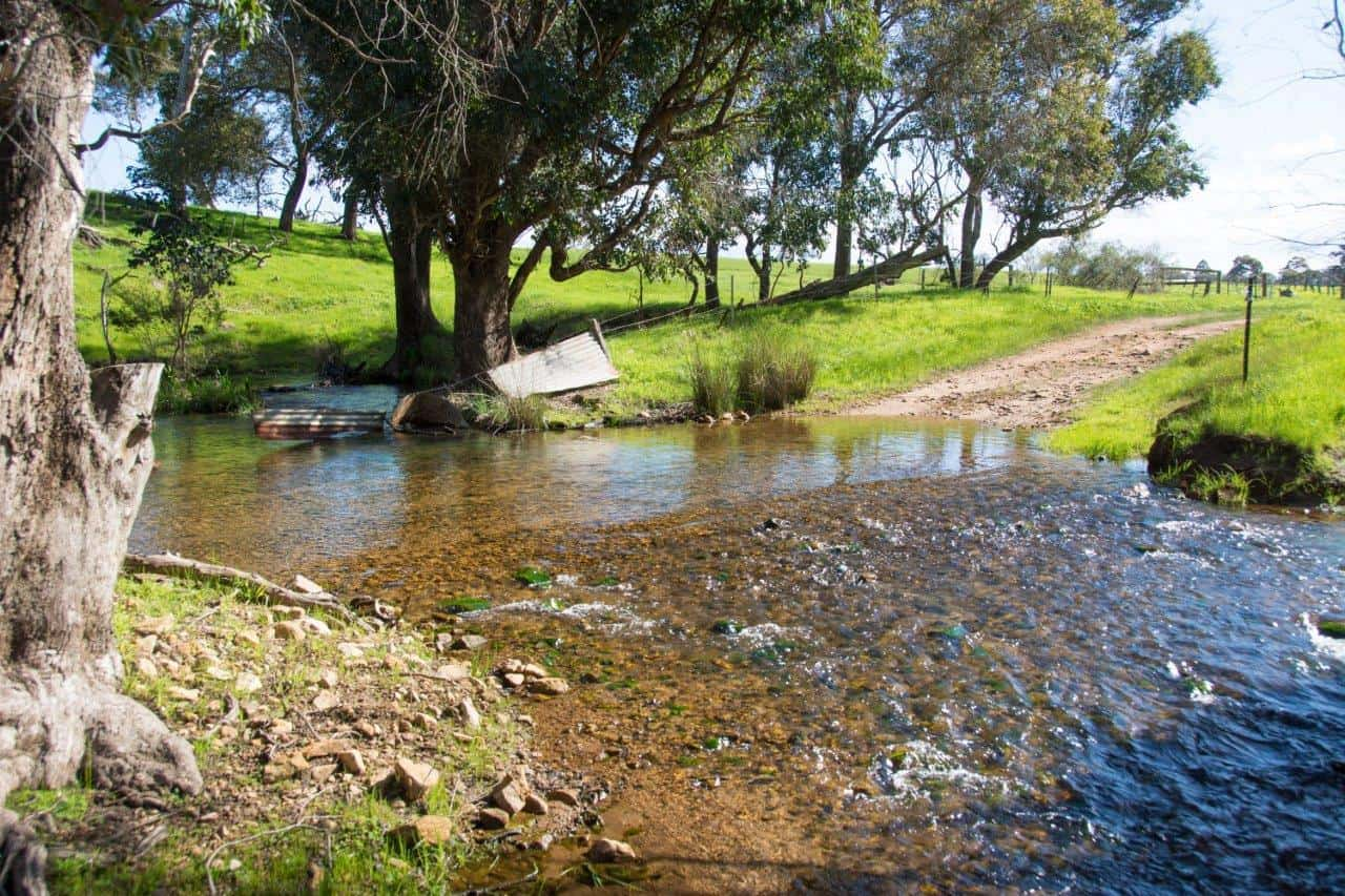 Bolinda Vale Creek