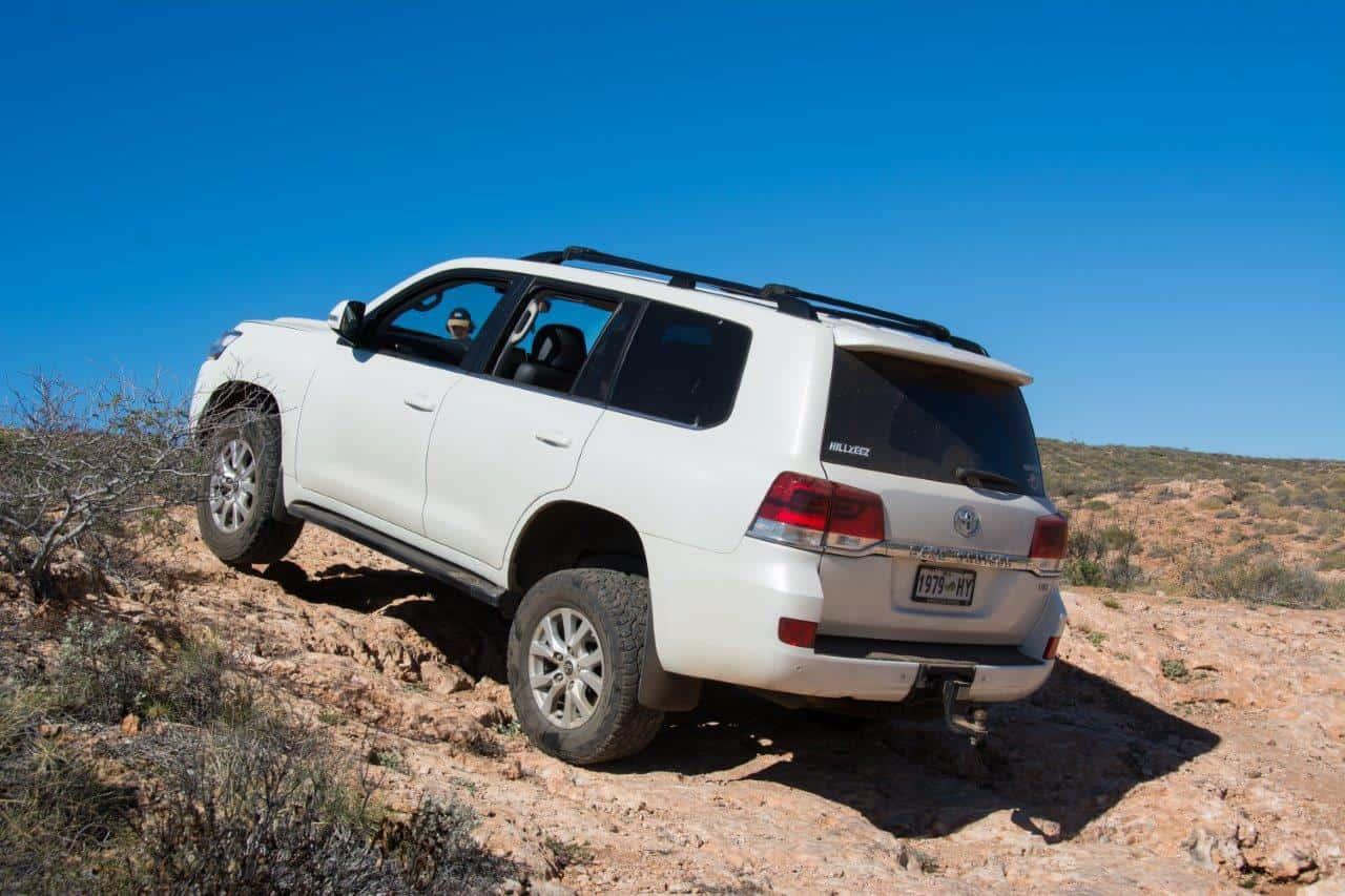 Wagon 4WD