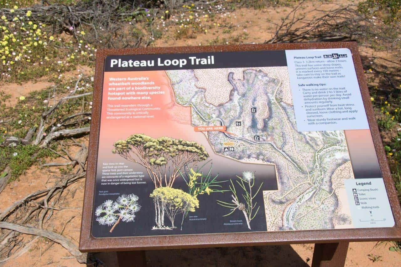 Coalseam Plateau walk