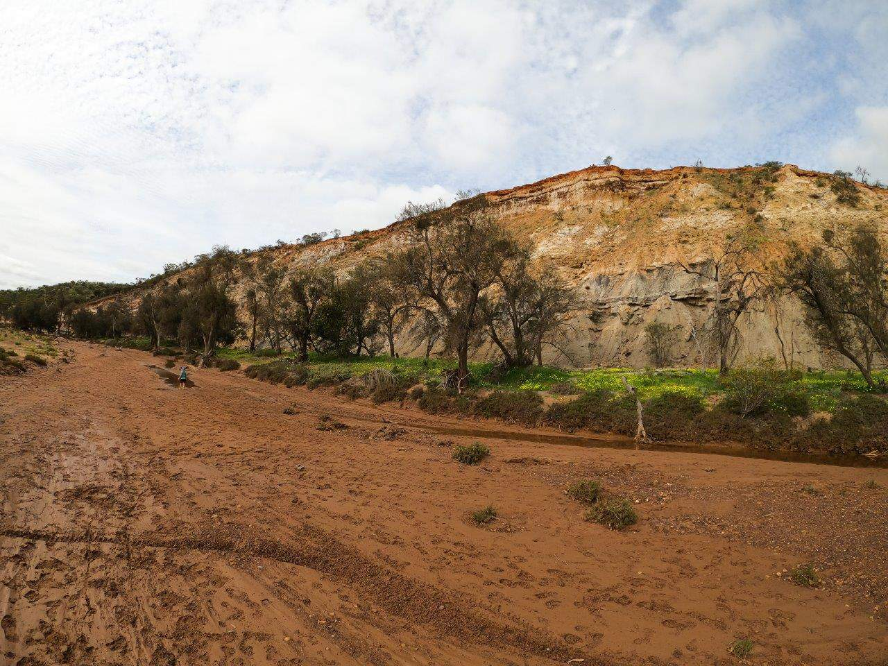 Coalseam cliffs