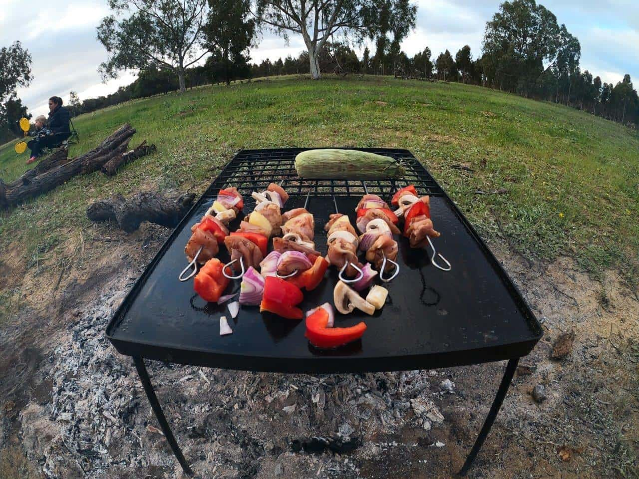 Skewers on the fire