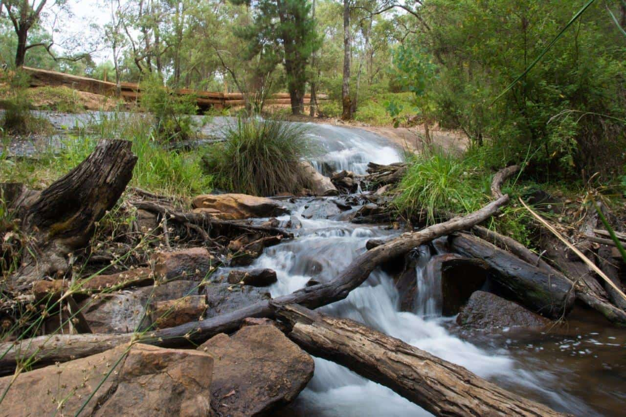 Lane Poole Reserve creeks