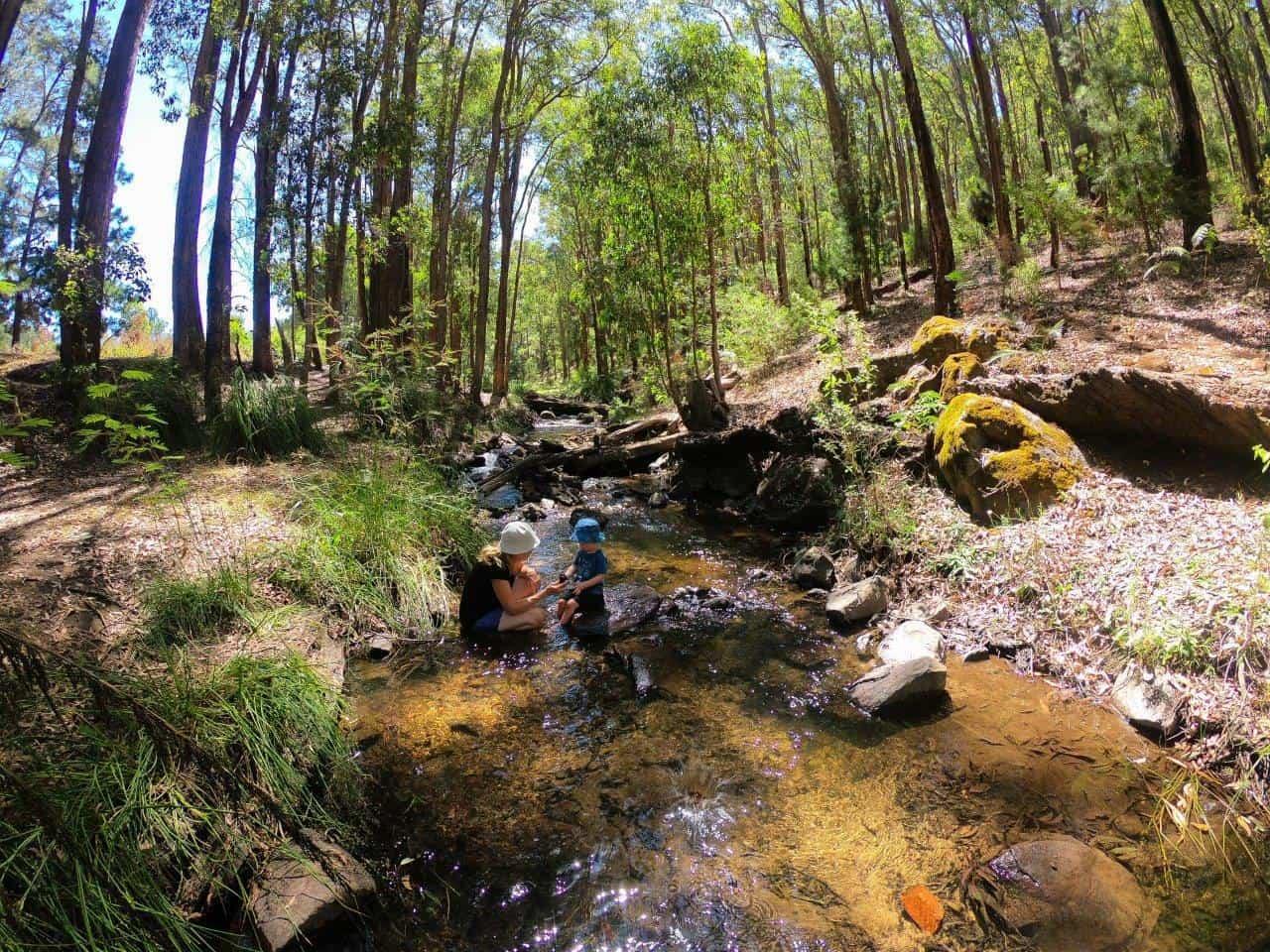 Enjoying the creeks