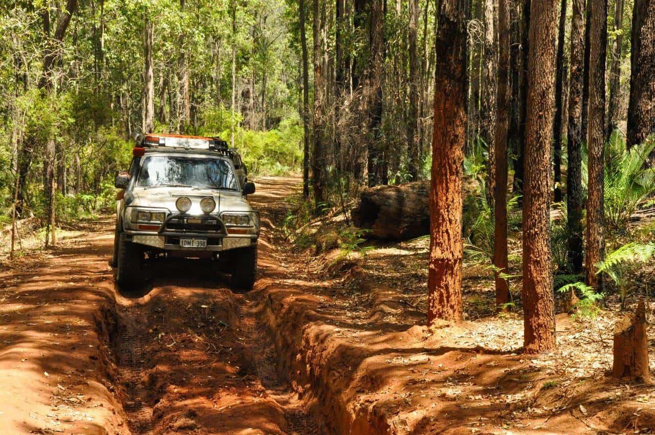4WD tracks at Dwellingup