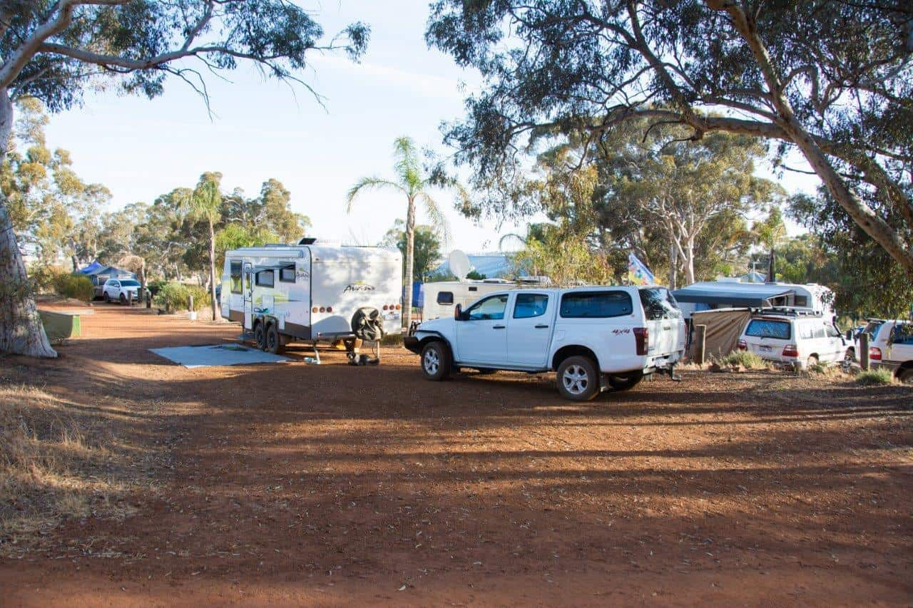 Camping at White Gum