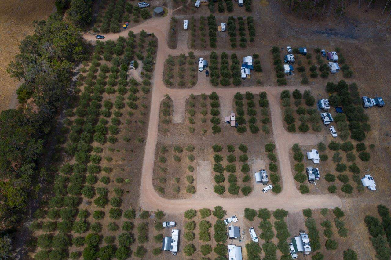 Olive Hill Farm from above