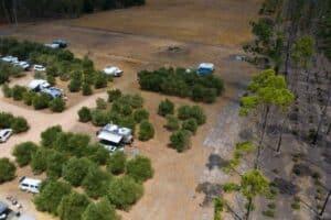 Olive Hill Farm