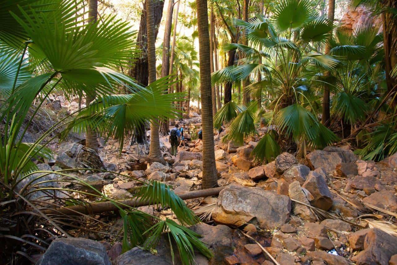 El Questro Gorge walk