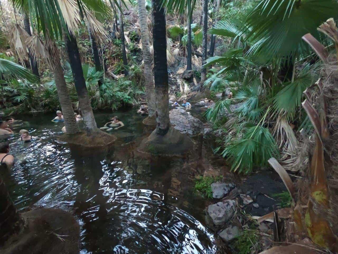 Zebedee Springs pool
