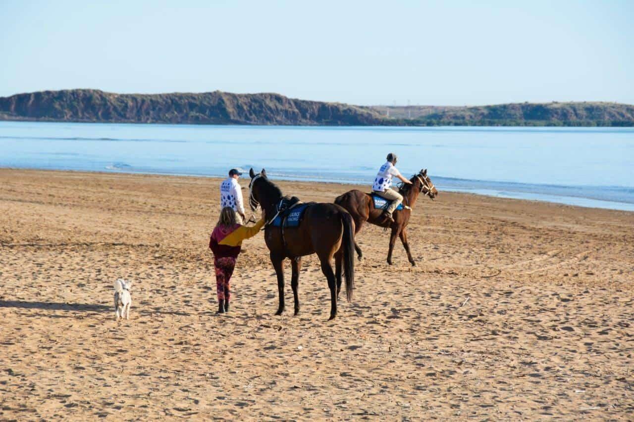 Horses at Cossack