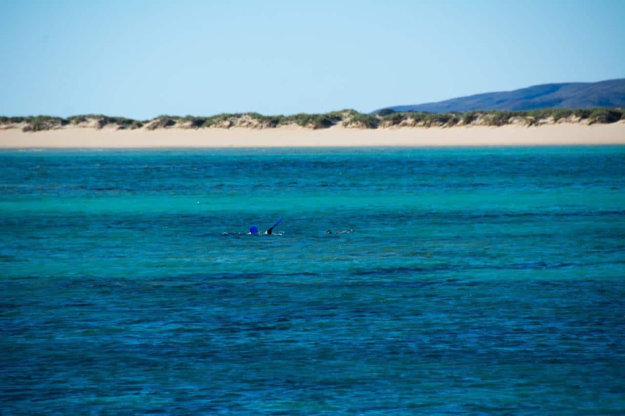 Osprey Bay diving