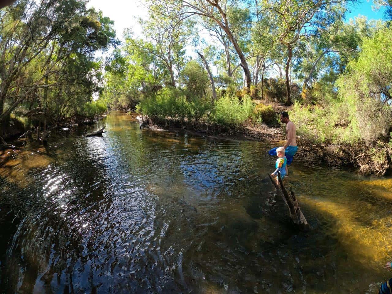 Moore River swimming